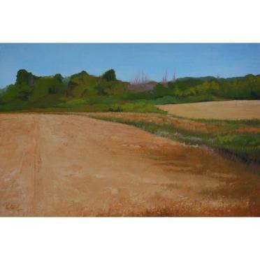 VENTURELLI_Wheat_Fields_large
